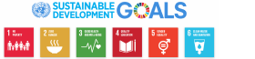 The UN SDGs and Impact Investing